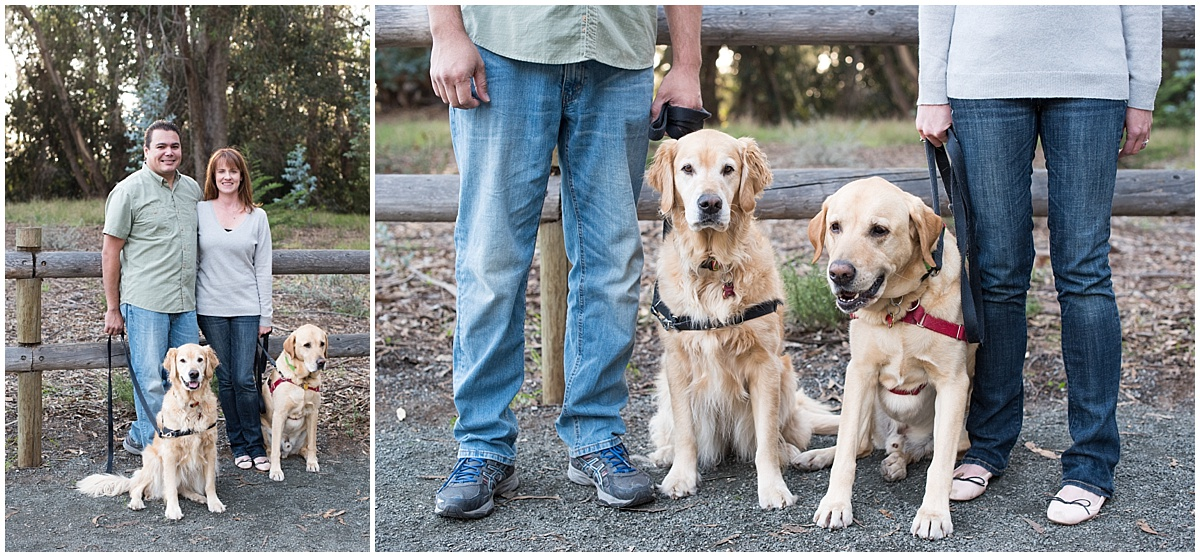Golden Retriever Dogs Family Photo Shoot in Pismo Beach and the Monarch Butterfly Grove, California