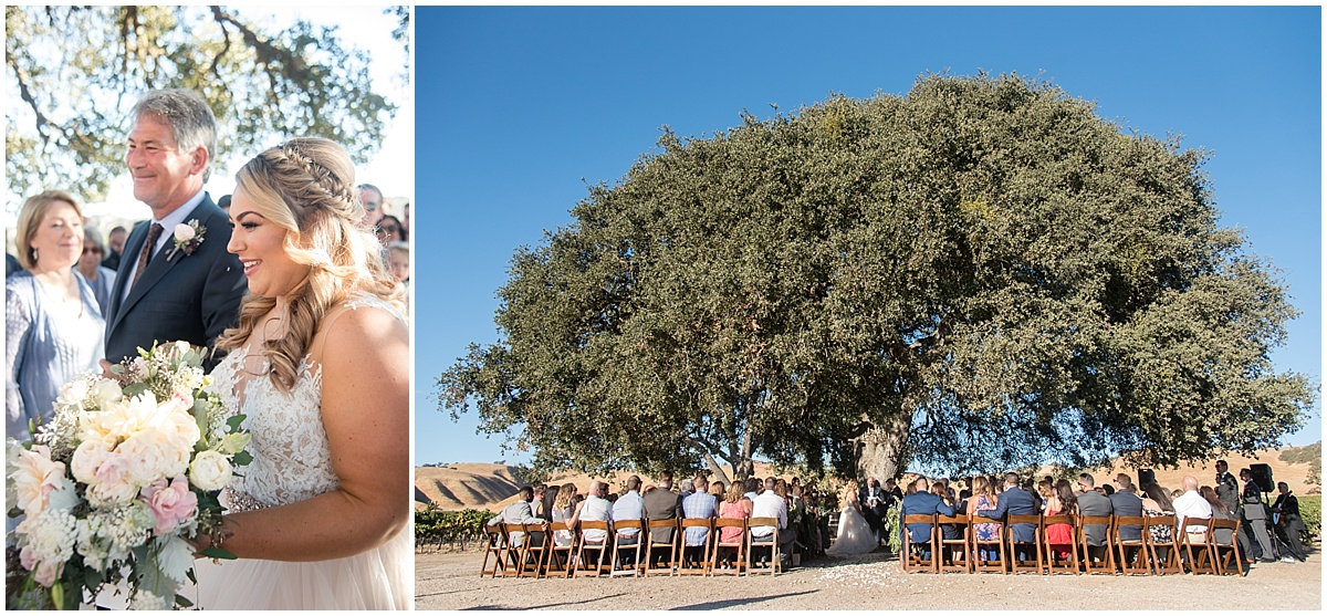 Cass Winery Fall Wedding with blues and burgundy in Paso Robles California